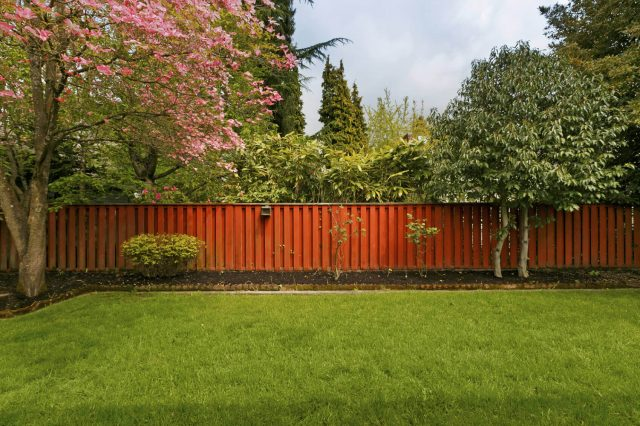 How To Create A Beautiful Backyard Without Grass